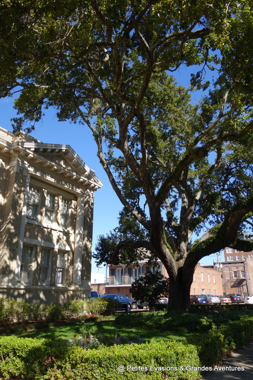 City Hall de Natchez