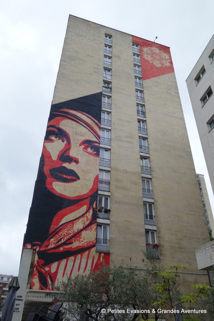 Rise Above Rebel, par Shepard Fairey