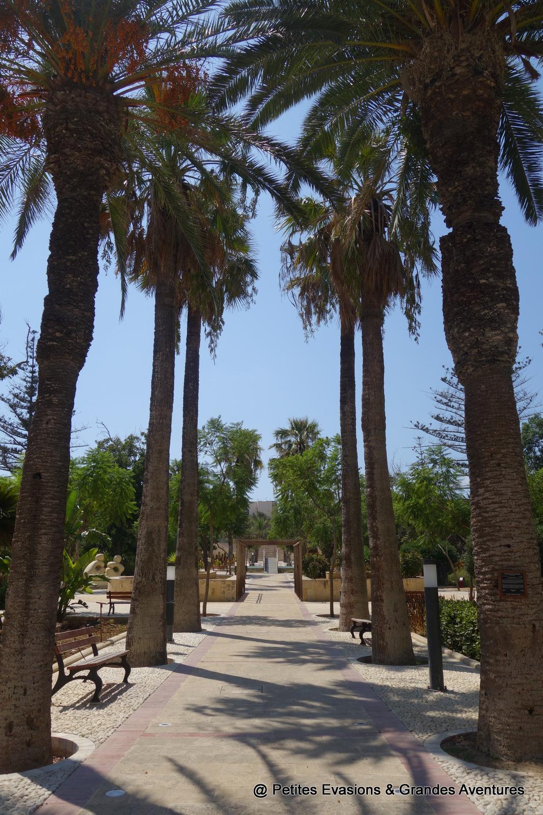 Palmiers de la Villa Rundle Gardens