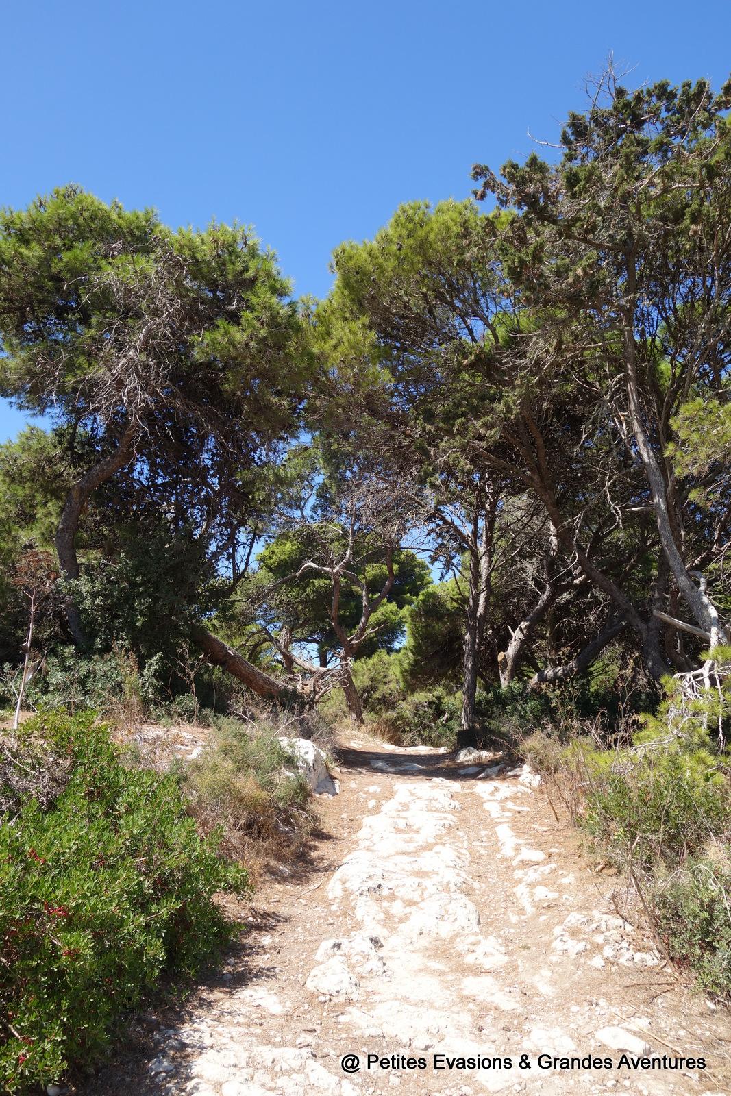 Buskett Gardens (Malte)