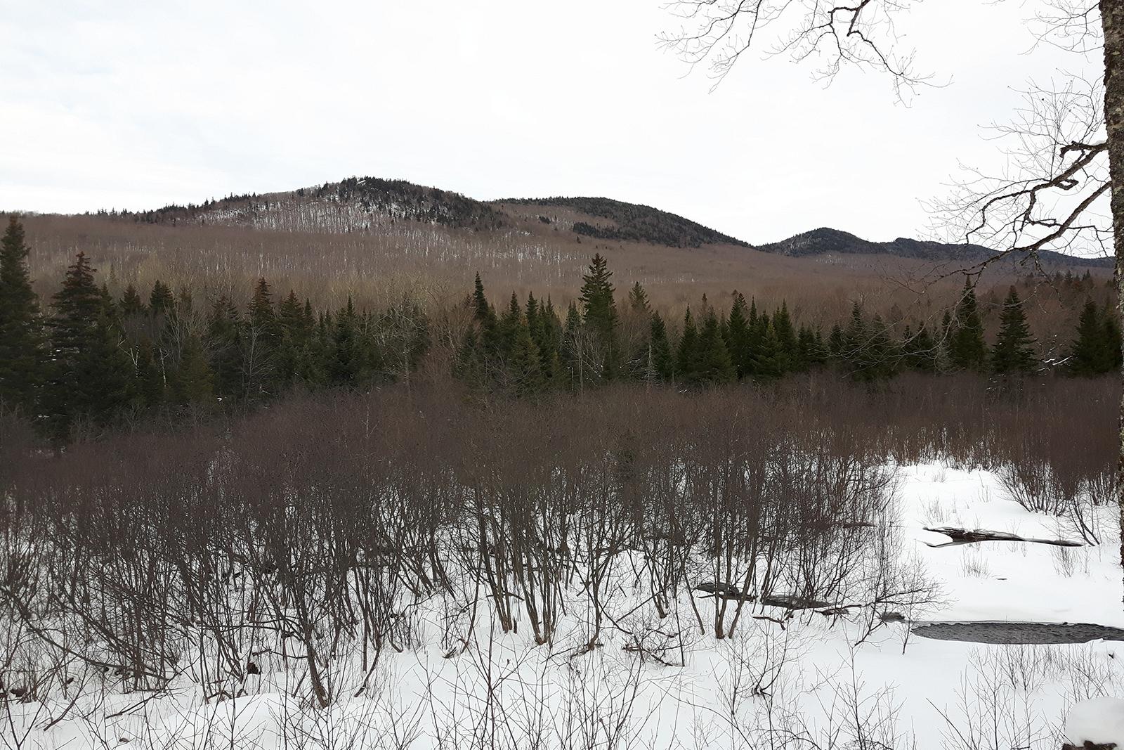 Mont Megantic Québec hiver