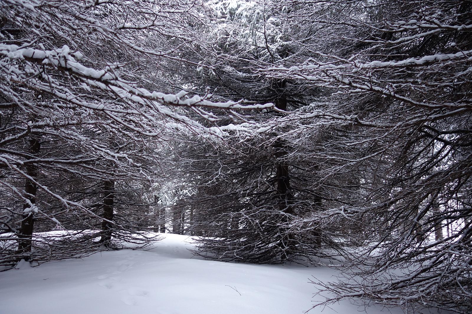 Village Gaspésien de l'Héritage Britannique Québec hiver